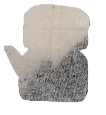 Достаточно посадить в саду обычный чайный пакетик чтобы