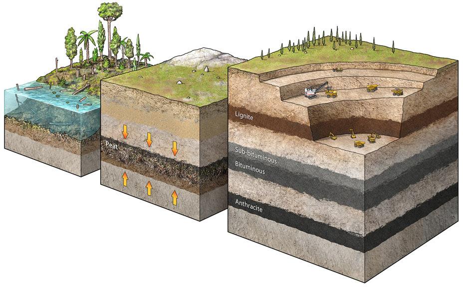 слой почвы картинки сделать
